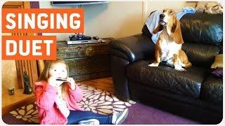 Dog Duet | Hounds Got The Blues