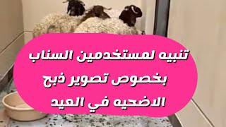 تنبيه مهم لمستخدمين السناب بخصوص تصوير ذبح الاضحيه في العيد علشان مايتوقف حسابك - عبدالله السبيعي