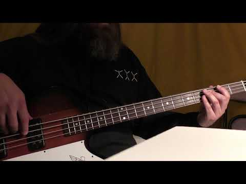 """Lhabia"" - DEFTONES Bass Cover"