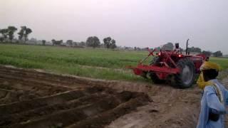 92 Adeel Ahmad agriculture farm @depalpur, pakistan