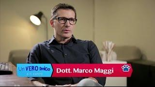 Un VERO Amico a 4 Zampe: SECONDA PUNTATA 1° parte -Dr. Marco Maggi