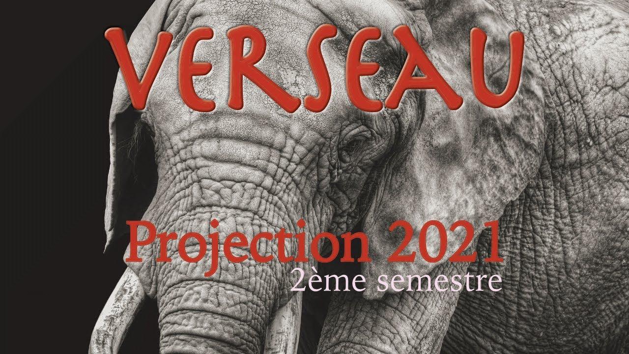 VERSEAU - Projection 2021 2ème semestre