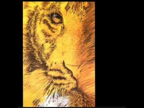 Клип Tangerine Dream - Tyger
