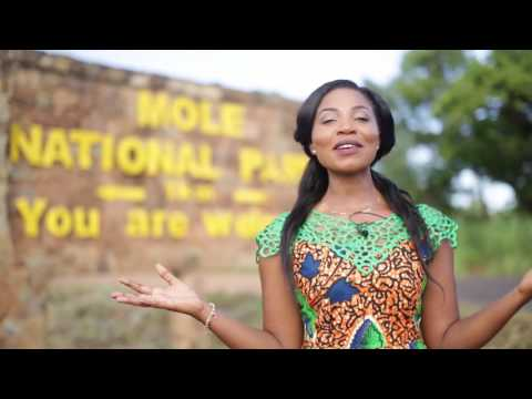 EPISODE 3 MISS GHANA 2015   AUDITION  TAMALE