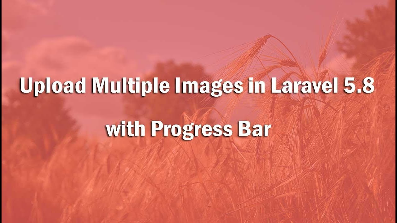 How to Upload Multiple Images with Progress Bar in Laravel