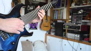 "Testudo Guitars - Marco Silvestri performs ""Blessed Relief"" by Frank Zappa"