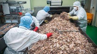 스케일이 다른 돼지 국밥, 순대, 편육 대량생산의 현장! Korean Pork Intestine Factory