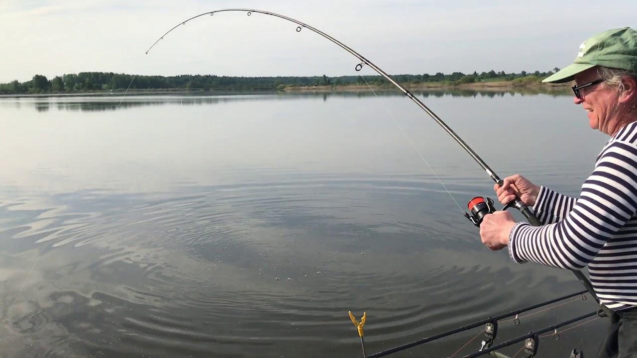 Платная рыбалка в орехово зуевском районе