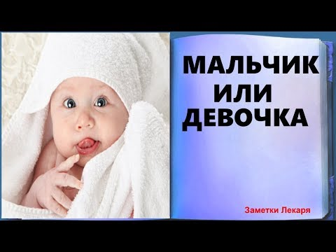 Как определить пол ребенка. На каком сроке определяют пол будущего ребенка.