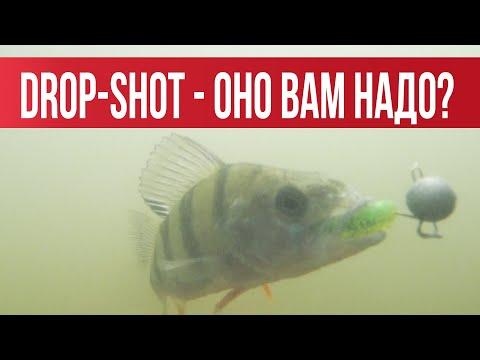 DROP-SHOT-  .  .    |   Fishingsib