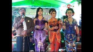 Top Hits -  Full Koplo Jawa Dangdut Cursari Gnk Musik