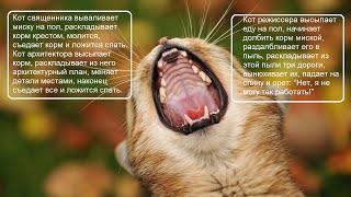 Анекдоты про котов / ч  7 / Коты  Кошки  Котята /  Котэ Саратовский / Приколы  Юмор