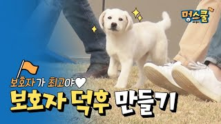 How to be a Hipster Caregiver 'I'll go wherever you go'│ Kang Hyungook's Puppy Class in Mung School