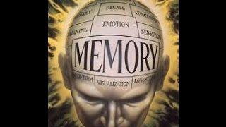 Эффективные тренинги развития памяти и творческого потенциала. Начало.