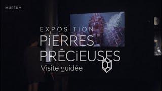 """Visite de l'exposition """"Pierre Précieuses"""""""