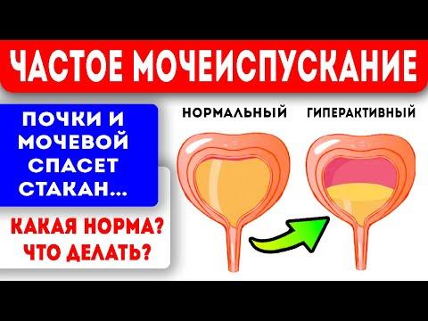 От частого мочеиспускания поможет стакан... Народная медицина для здоровья мочевого пузыря