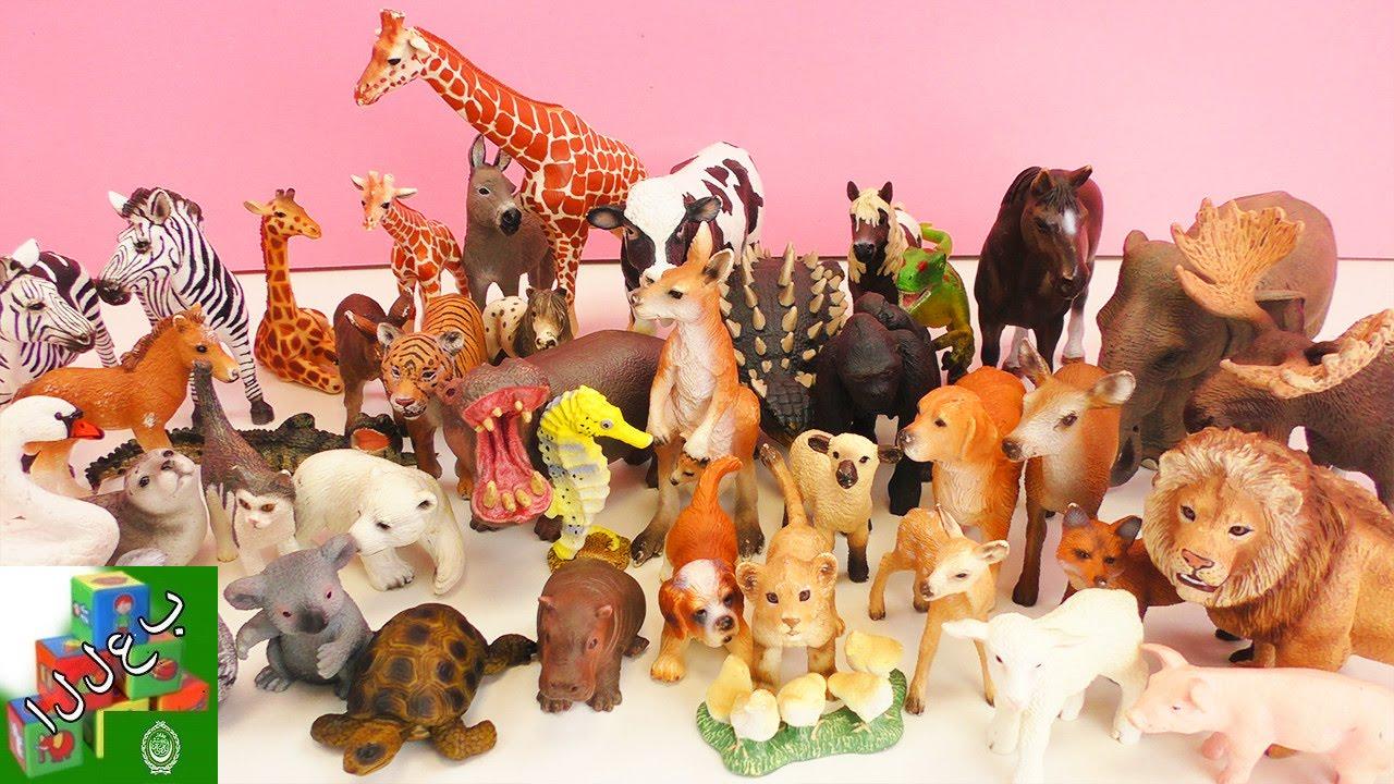 لعبة مجموعات الحيوانات الأليفة والمتوحشة | تساعد الطفل على حفظ أسمائها