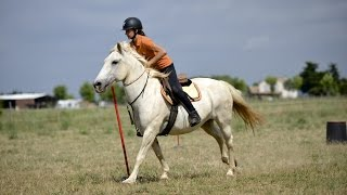 Stage prépa lamotte pony games: Les outsiders
