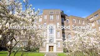 Institute for Global Food Security Postgraduate Promotional