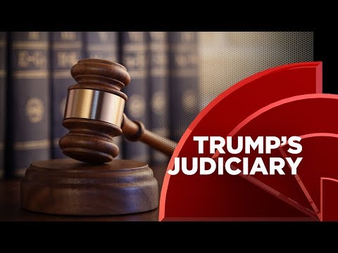 Donald Trump Rolls Back Diversity On The Federal Bench With His Judicial Appointments