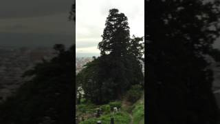 Aizu Last Samurai's Harakiri Hills thumbnail