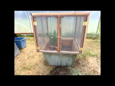 Black Soldier Fly Stage 2 The Pupation Bin Youtube
