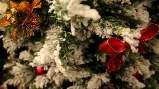Дед Мороз и Снегурочка Красноярск Выезд на дом, промо акции, детский сад Заказать(, 2015-12-02T16:05:50.000Z)