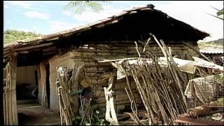 Enfermedad de Chagas CINTROP -- UIS                 24:14 minutos