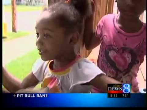 Michigan pit bull ban 'unlikely'