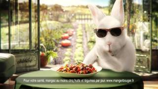 Nouvelle publicité Cassegrain lapin aux lunettes noires
