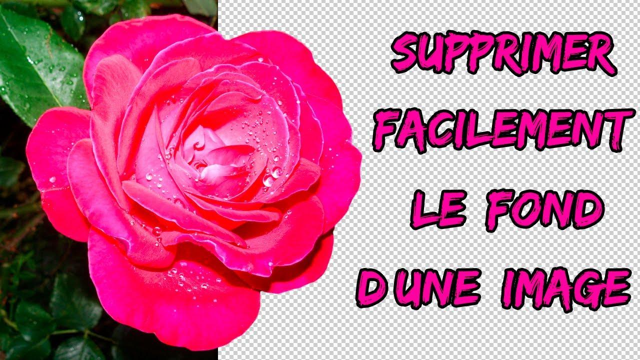 Supprimer Facilement L Arriere Plan D Une Image Youtube