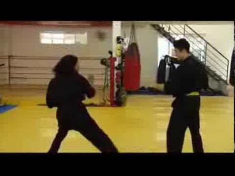 Martial Arts Fight+ Demonstration+ Johnny  Tri Nguyen 2012 HD