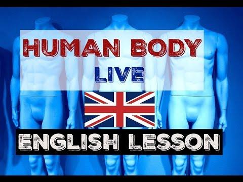 HUMAN BODY - LIVE English Lesson