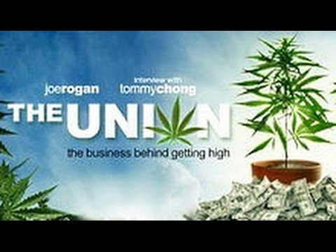 the-union:-the-business-behind-getting-high