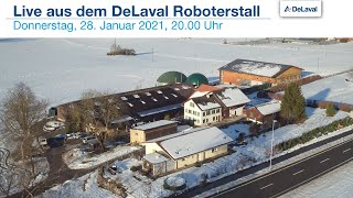 Live aus dem DeLaval Roboterstall - Bei agrino in Remetschwil AG