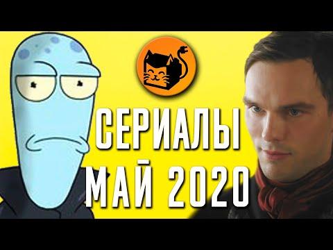 Лучшие сериалы мая 2020. Обзор. Netflix, HBO, Amazon, Hulu