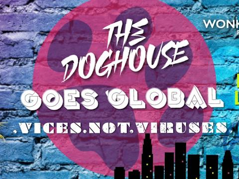 Doghouse Stream