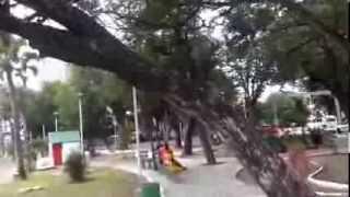 Andando por Fortaleza -  Cidade da Criança