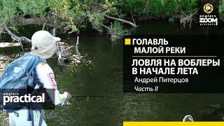 Голавль малой реки. Ловля на воблеры в начале лета. Андрей Питерцов. Часть 2. Anglers Practical