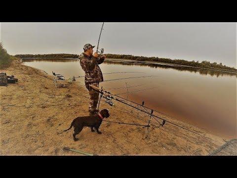 Рыбалка на реке Тура. Подлещик подъязок . Тюмень. Выезд-4.