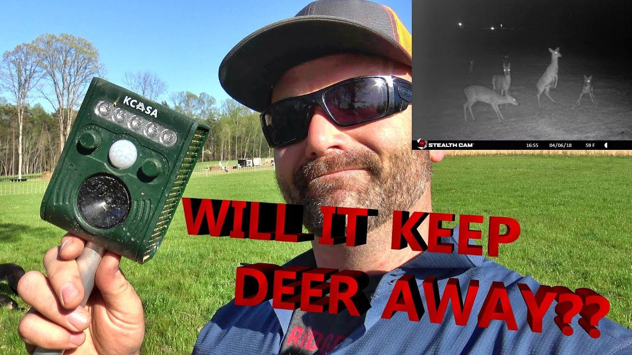 how to keep deer out of garden youtube