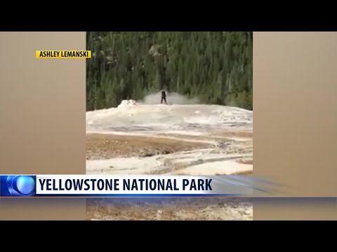 Man arrested after walking on Old Faithful geyser in Yellowstone National Park
