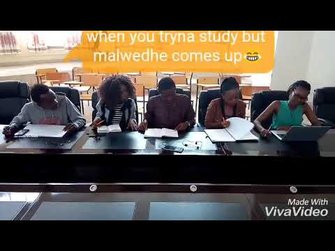 Download When you trying to study but maledhwe won't let you😂😂😂😂😂