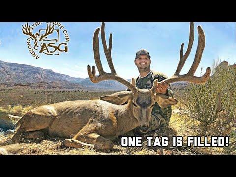 2018 Arizona Strip Archery Mule Deer Hunt Day 8.5! ( The Guide Life Series) Antler Trader