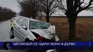 Автомобил се удари челно в дърво