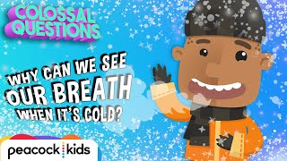 Why Can You See Your Breath When It's Cold? | COLOSSAL QUESTIONS
