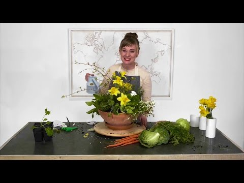 Mixing potted plants and flowers
