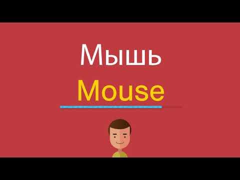 Как по английски будет мыши