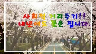 2020 창원벚꽃 Fu…