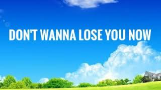 Don't Wanna Lose You Now